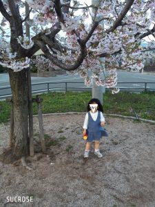 山形も桜が咲きました